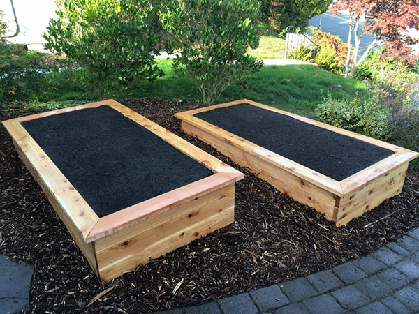 Cedar Raised Beds